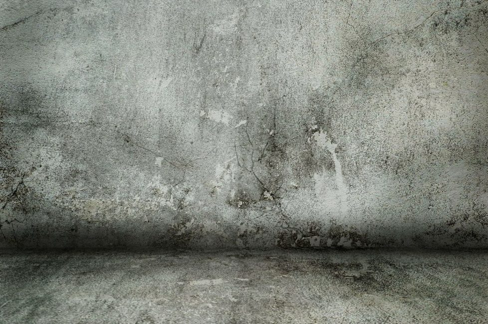 concrete-wall-331294_1920